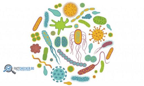 Безопасни ли са пробиотиците? д-р Стефан Митев отговаря.